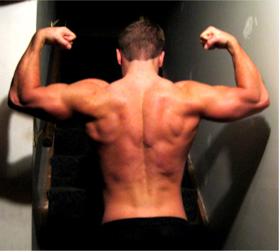 P90x Pull Up Bar I Want To Get Ripped